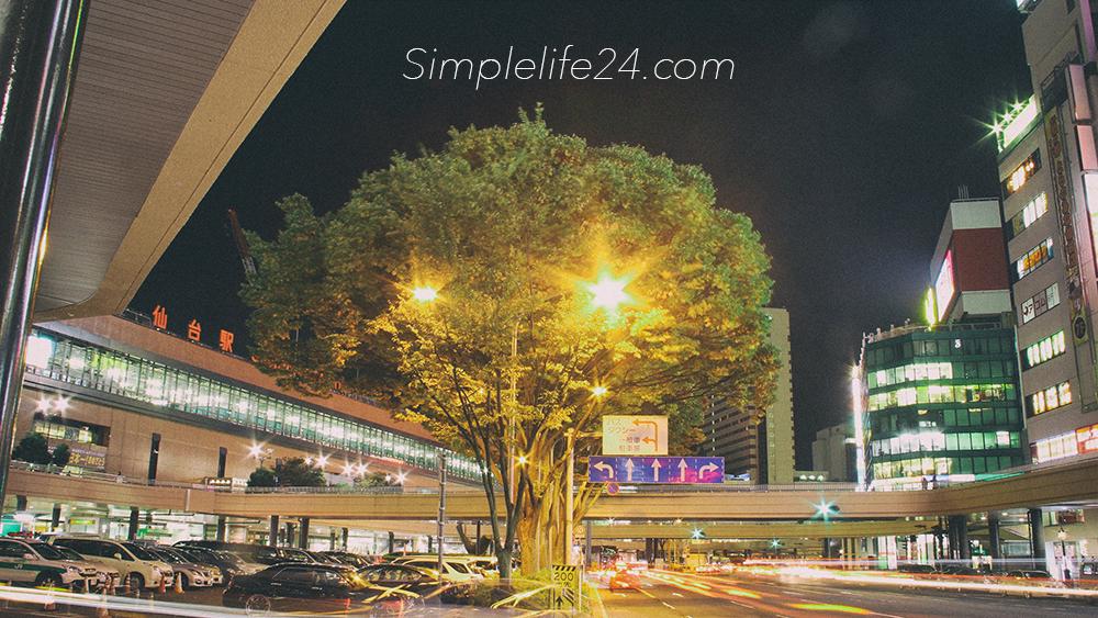 シンプルライフ仙台駅前